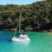 Rockfish Catamarans Sydney Harbour