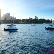 Sydney Harbour Events
